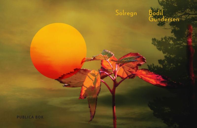 Solregn av Bodil Gundersen